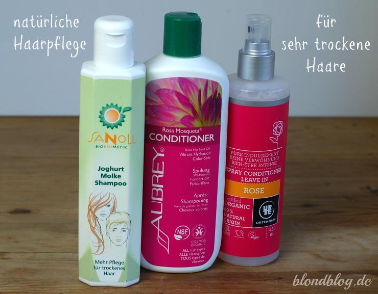 Haarpflege gegen trockene haare